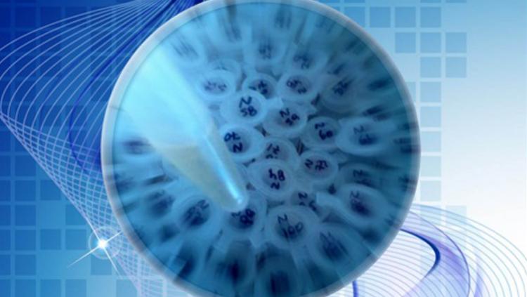 Defensa de seminario: Selección de bacterias lácticas para el control biológico de aislados regionales de Phytophthora spp