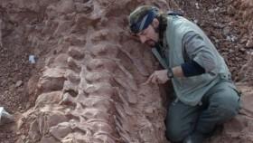 Diario Los Andes: Un paleontólogo mendocino fue reconocido por su labor en la preservación de dinosaurios