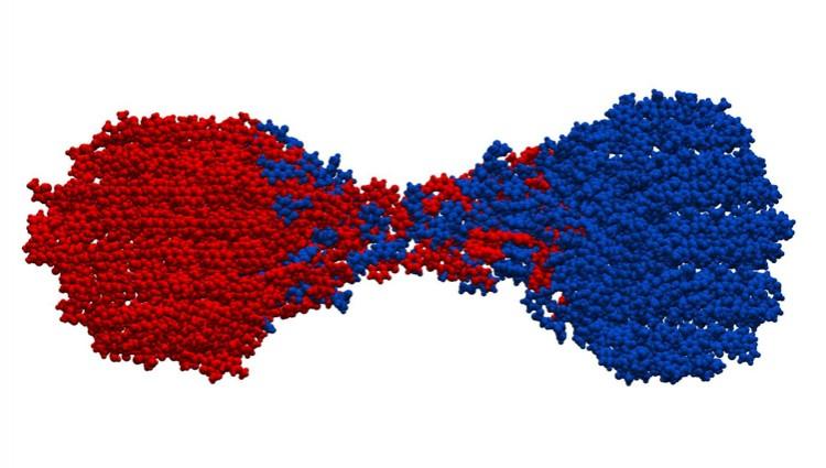 Charla: Estudio de la Reacción Mecanoquímica Entre Aspirina y Meloxicam