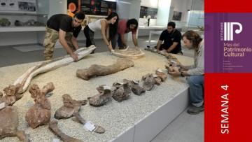 Miembros del Laboratorio de Dinosaurios brindarán una charla sobre Patrimonio Paleontológico