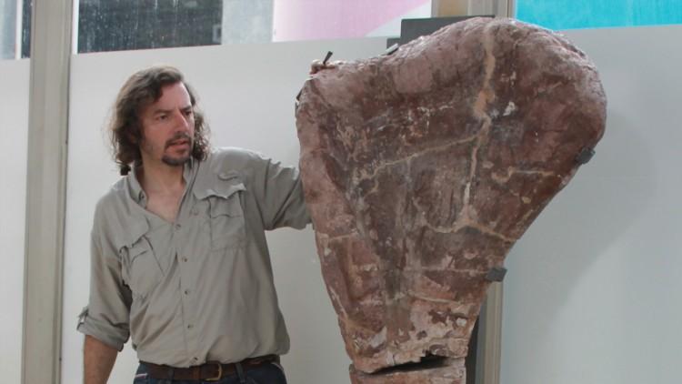 El Laboratorio de Dinosaurios de la FCEN anuncia el descubrimiento del dinosaurio Notocolossus, uno de los mayores animales terrestres conocidos