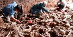 Unidiversidad: Profesional del Equipo de Antropología Forense visitará la UNCUYO