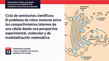 El problema de cómo moverse entre los compartimientos internos de una célula desde una perspectiva experimental, molecular y de modeladización matemática