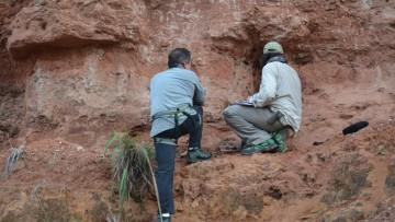 Descubren dinosaurios en Brasil: viaje del Prof. Dr. Bernardo González Riga