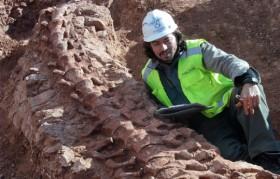 Presentan evidencia de un nuevo dinosaurio de Mendoza