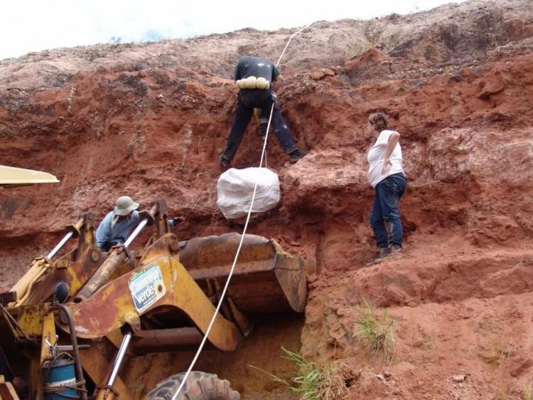 Director del Laboratorio de Dinosaurios participó como investigador invitado en el descubrimiento de un dinosaurio en Brasil