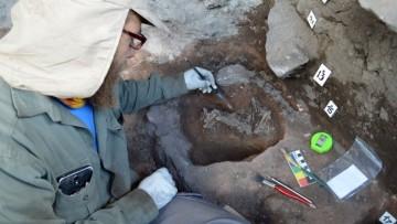 Investigadores de la Facultad hallaron restos arqueológicos de otro niño en Las Cuevas