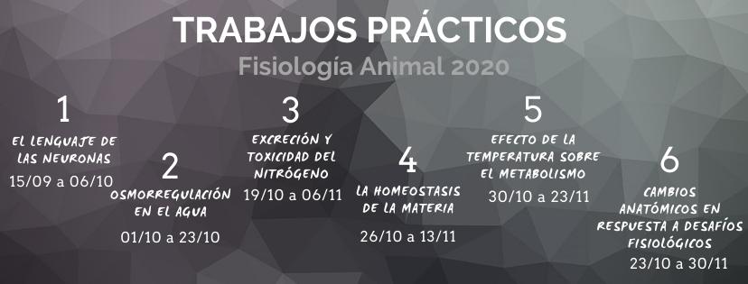 Cronograma de TRABAJOS PRÁCTICOS