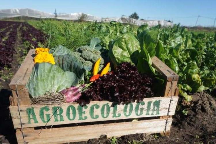 """Se abre la inscripción al curso """"Agroecología: hacia una producción sustentable"""" en el Sur mendocino"""