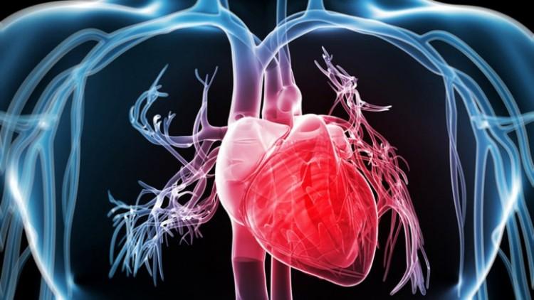 Charla abierta: Estimación del esfuerzo  miocárdico en ecocardiografías  mediante un enfoque de  Speckle Tracking difeomórfico