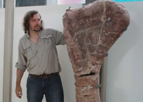 Diario Los Andes: Un grupo de científicos mendocinos descubrió una nueva familia de dinosaurios