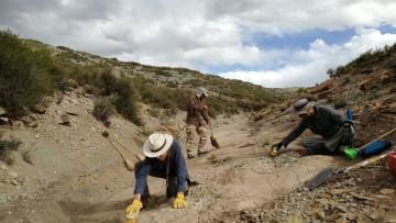 Equipo de Dinosaurios de la FCEN-UNCUYO: avances en la investigación y protección del Parque Cretácico Huellas de Dinosaurios de Malargüe