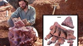 Diario La Nación: Descubren en Mendoza un dinosaurio que sería el más grande del mundo