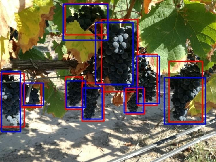 Estudio de técnicas de Aprendizaje Automático en el análisis de imágenes para pronóstico de cosecha es el título del Seminario.