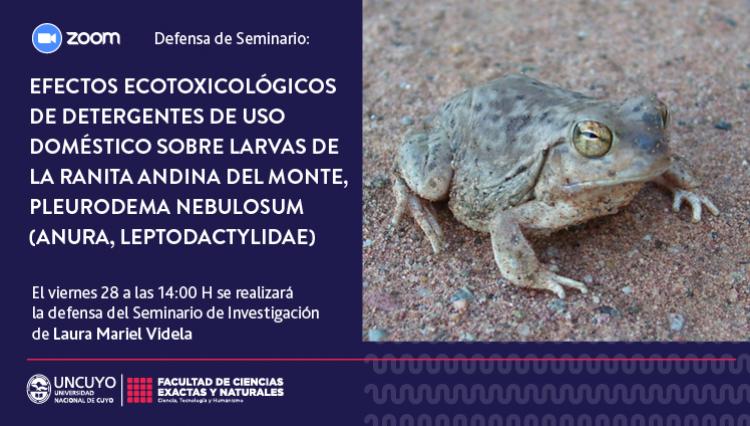 Defensa de Seminario de Investigación de Laura Mariel Videla